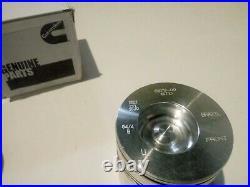 94-98 Dodge Cummins 5.9 12V STD Standard Size OE Bowl Piston Set with Pins + Clips